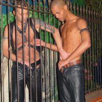 Porno Gaysex auf der Gay Sexhotline